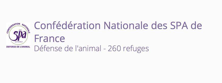 90 EME ANNIVERSAIRE DE LA CONFEDERATION NATIONALE DES SPA DE FRANCE